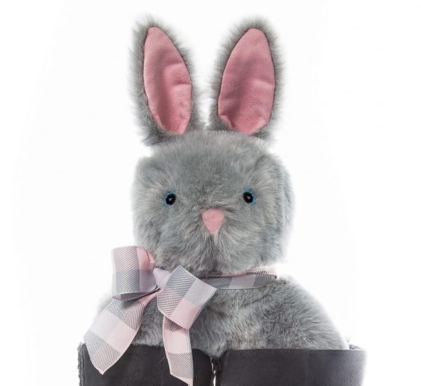 Gray Bunny Front
