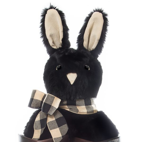 Black Bunny - Front